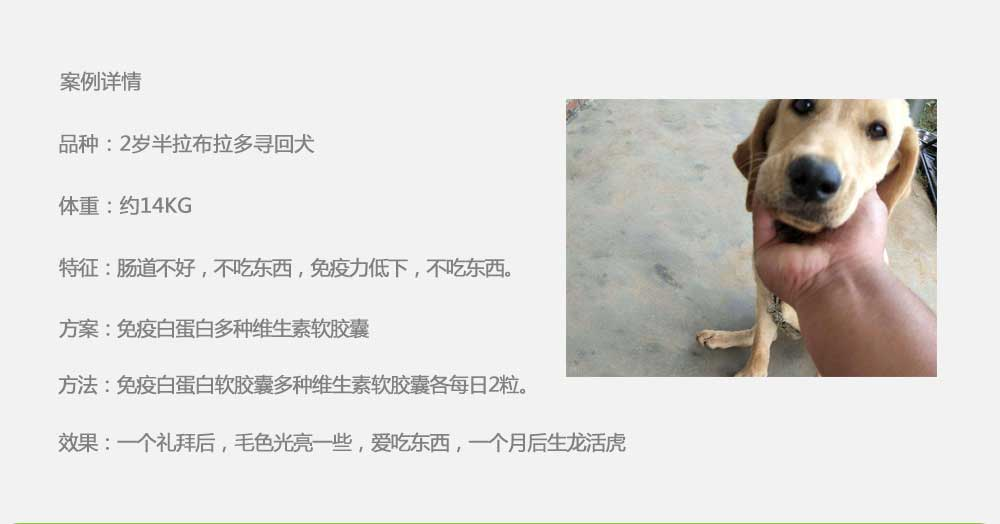 杨凌职业技术学院_19.jpg